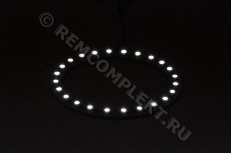 Ангельские глазки 3528 белые 5500-6500 24 светодиода d8cm 12V (опт. цена от 4 шт)