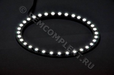 Ангельские глазки 3528 белые 5500-6500 33 светодиода d10cm 12V (опт. цена от 4 шт)